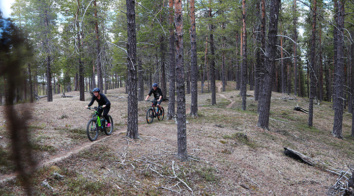 Hiking & Mountainbike with Experience Arjeplog
