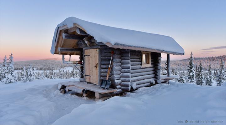 Northern Lights Cabins