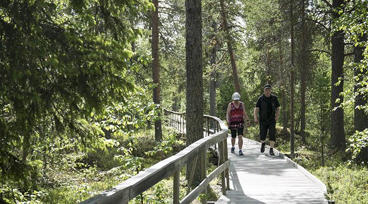 Vaukaleden, the Vauka trail