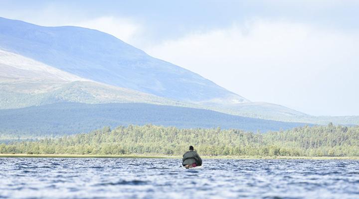Lapland Wildlife Kayaking